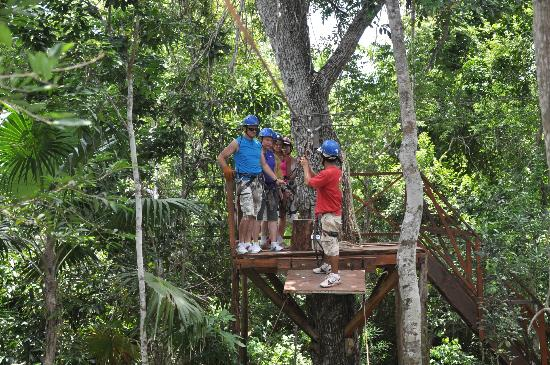 Hummer Jungle Tours: zip line