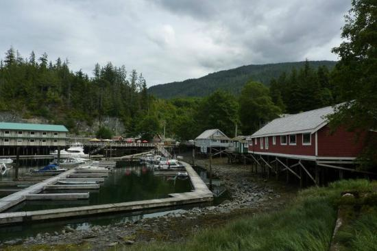 Telegraph Cove Resort : Telegraph Cove
