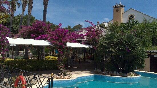 Cala Sant Vicenç, España: Pool 2 mit Fr?hst?cksplatz