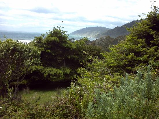 Howard Creek Ranch: A magnificent view from one of H.C.R.'s hiking trails.