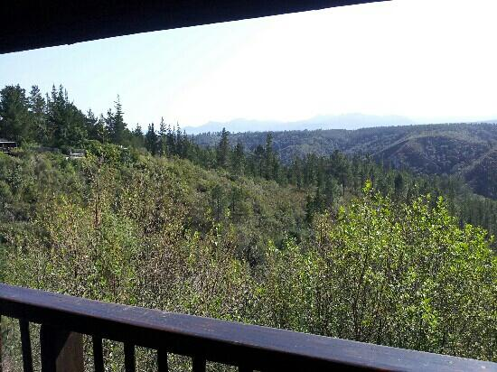 Forest Valley Cottages: view from balcony