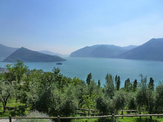 Agriturismo El Giardi: Uitzicht vanuit de kamers/restaurant/zwembad