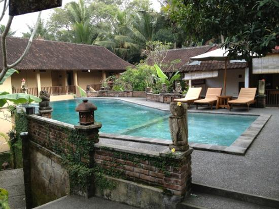 Jati 3 Bungalows: Swimming Pool