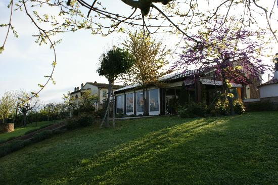 Locanda Le Boscarecce: This is how it looks from the garden, next to the pool.