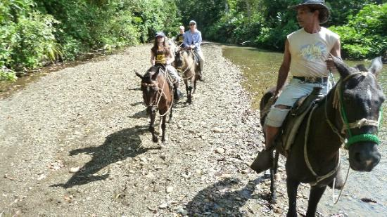 El Remanso Lodge : Horseback riding