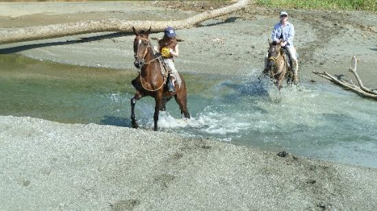 El Remanso Lodge: Horseback riding (El Remanso arranged it)
