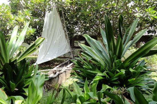 Karafuu Beach Resort and Spa: Gallawas