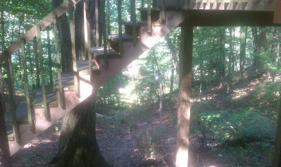 Yogi Bear's Jellystone Park Camp-Resort: deck area
