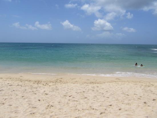 Juan Griego, Venezuela: Playa del Hotel