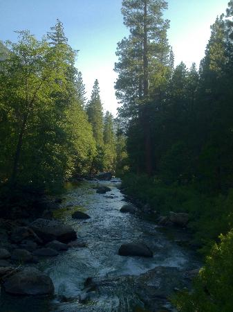 Kings Canyon Lodge: Meadow Creek in Kings Canyon