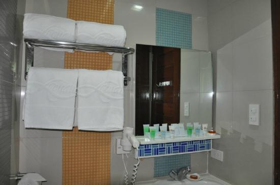 Acuatico Beach Resort & Hotel: The bathroom