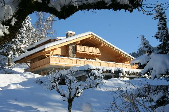 Chalet La Renarde : View of the chalet in winter