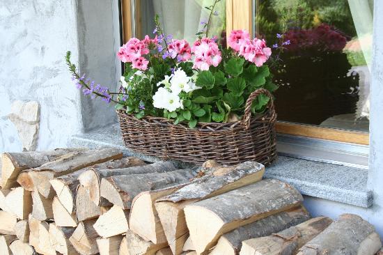 Chalet La Renarde : Les belles fleurs d'été