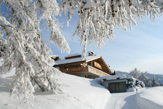 Chalet La Renarde : View of the private access to the chalet