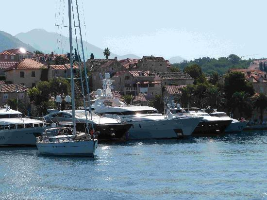 Villa Ivy: Cavtat Harbour 2