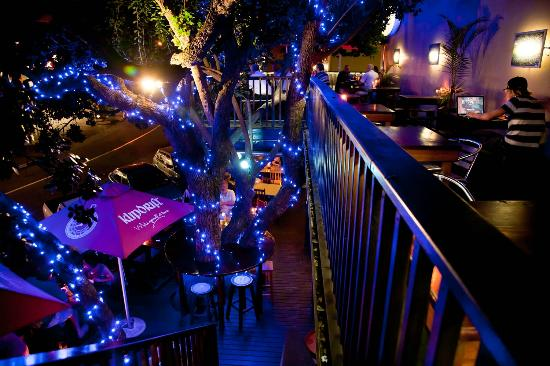 Blue Olive 2 Picture Of Blue Olive Restaurant Wilderness