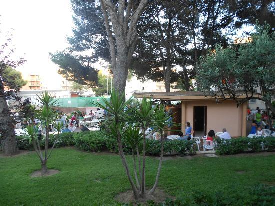 Insotel Club Cala Ratjada: Caffetaria piscine
