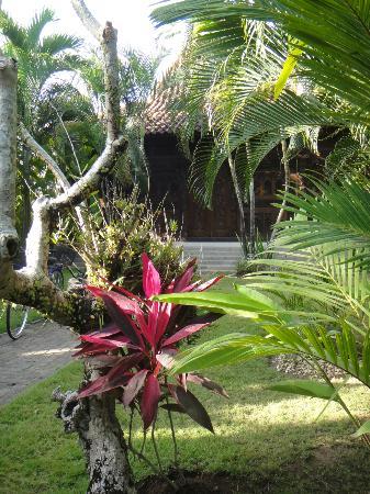 Fare Ti'i  (Villa Ti'i Bali): Nice garden