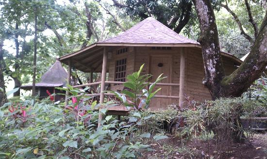 Hotel Los Mangos: our hut