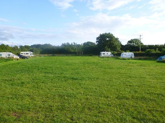 Wookey Farm: Camping field