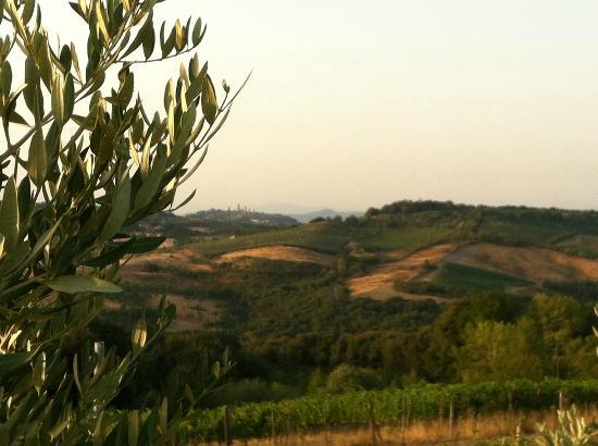 Antico Borgo il Cardino: Vue depuis la piscine