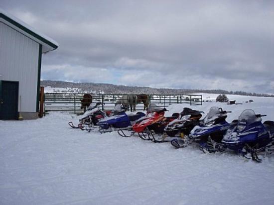 Fish Hawk Flats : Year Round Fun Found Here
