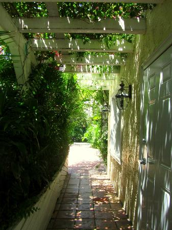 The Caribbean Court Boutique Hotel: Walkway