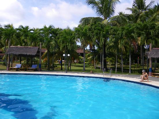 Waterfront Insular Hotel Davao: The pool