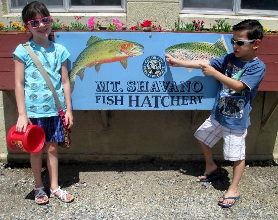 Mt. Shavano Fish Hatchery : vistor's center