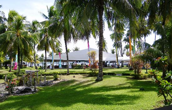 Waterfront Insular Hotel Davao: The garden