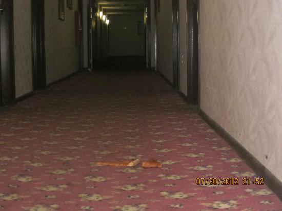Days Inn Berlin Meriden: Disgusting food in hall