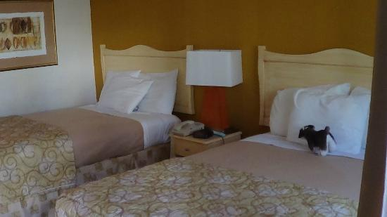 Americas Best Value Inn Golden Gate: chambre