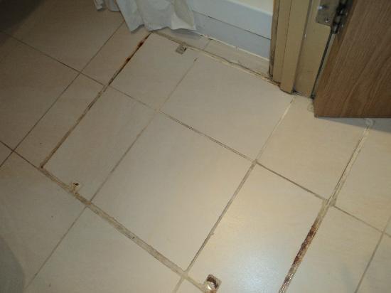 Trebovir Hotel: pulizia nel bagno