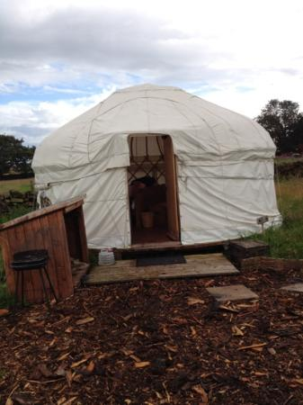 Secret Cloud House Holidays: The front of Blackberry yurt