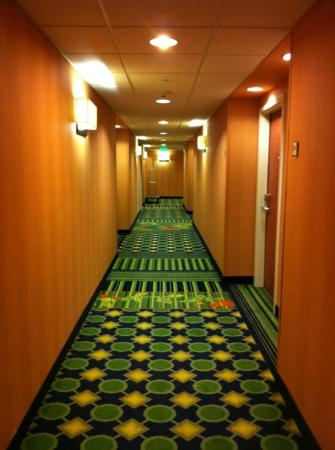 Fairfield Inn & Suites Columbia: Hall