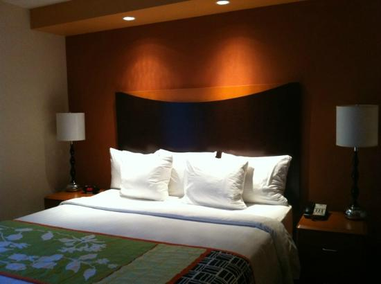 Fairfield Inn & Suites Columbia: Bed