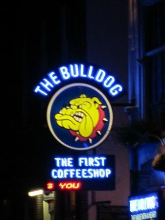 Rotlichtviertel Walletjes: The Bulldog