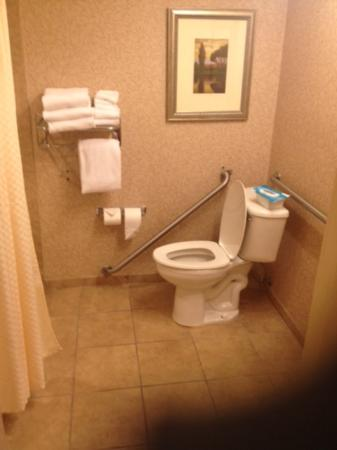 Red Lion Hotel Pasco: The towel rack is above the hand rail and in the way when the hand rail is attached to the wall!