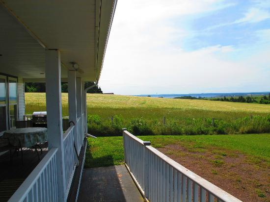 Cape Road Cottages: View from the deck