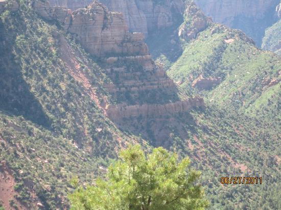 Kolob Canyons: Beautiful