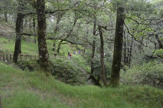 Wicklow Mountains National Park: Tolle Wanderwege