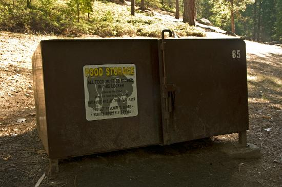 Wawona Campground: Anti-Bear Food Locker