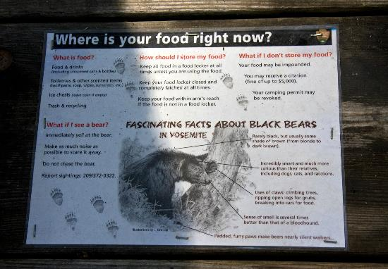 Wawona Campground: Bear information on the picnic table