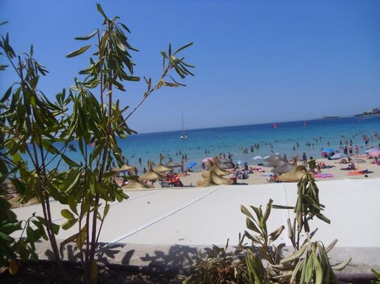 Be Live Adults Only Costa Palma: beach view from hotel pool area