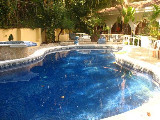 Hotel Villa Romantica: Pool