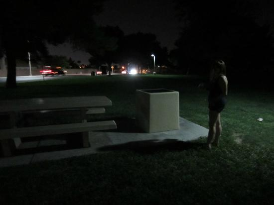 Vegas Specialty Tours: Supposedly haunted park- pretty boring and nothing happened