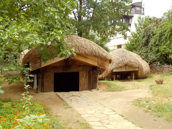 Village Museum (Muzeul Satului): Underground Home