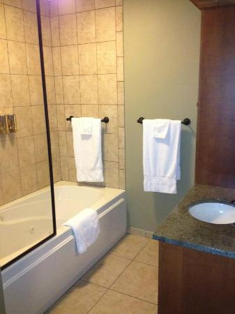Chestnut House Bed & Breakfast: Bathroom Shower and jacuzzi *Clean* !!!