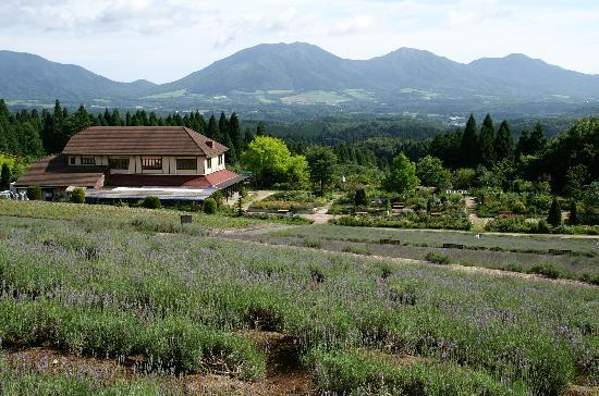 Hiruzen Herb Garden Her Bill