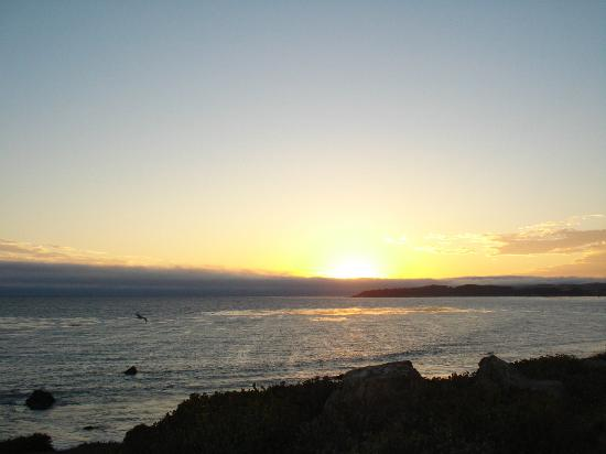 Quality Inn San Simeon: Amazing sunset views from your own room
